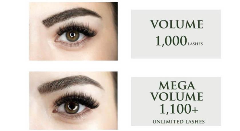 Midaz lashes   brows  %282%29