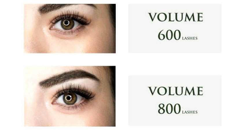 Midaz lashes   brows  %281%29